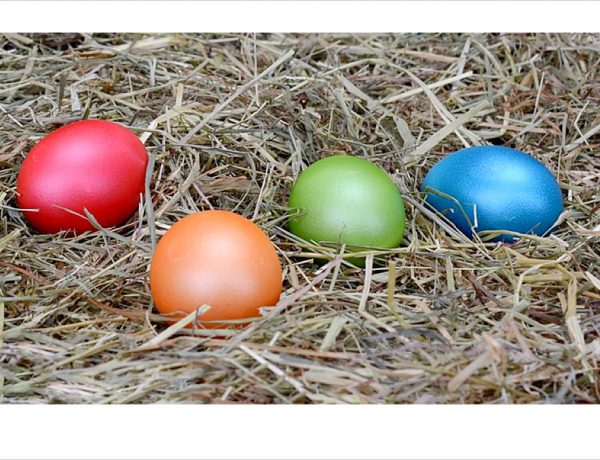 Ostern, easter, Frohe Ostern, happy easter